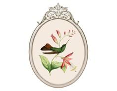 Репродукция гравюры «Птица счастья» в раме «Офелия» Object Desire
