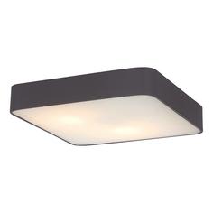 Потолочный светильник Art L