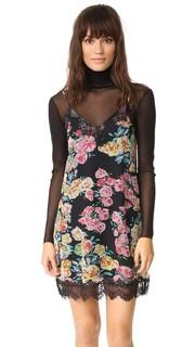 Платье-комбинация с кружевной отделкой Ella Moss