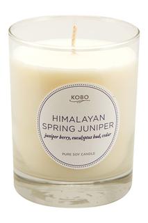 Ароматическая свеча Himalayan Spring Juniper, 312гр. Kobo Candles