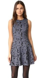 Платье Fonda с заниженной талией и округлым вырезом Alice + Olivia