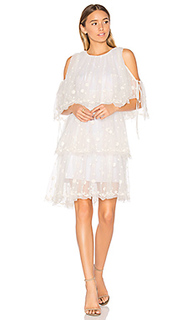 Embroidered tulle dress - Needle & Thread