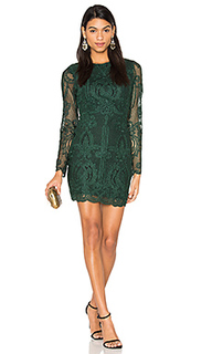 Lace open back dress - Lavish Alice