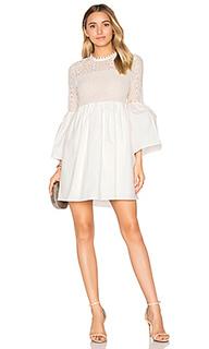 Flare sleeve lace mini dress - Endless Rose