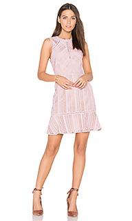 Кружевное платье kimmy - Greylin