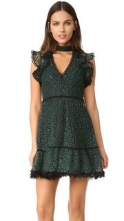 Платье Lilly Alexis