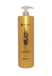 Шампунь для волос Brelil Professional