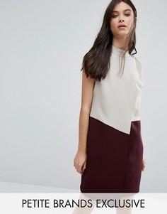 Платье колор блок без рукавов с запахом Alter Petite - Мульти