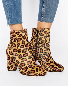 Ботинки с принтом леопарда Miss Selfridge - Черный