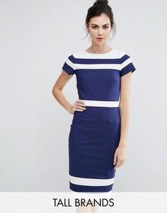 Платье-футляр с контрастной отделкой Paper Dolls Tall - Темно-синий