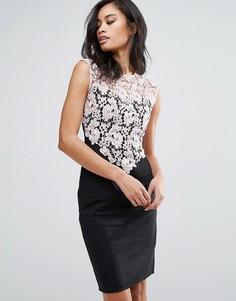 Платье-футляр с кружевным верхом Paper Dolls - Черный