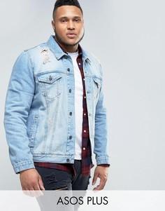 Рваная джинсовая куртка ASOS PLUS - Синий