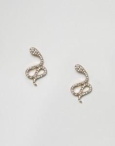 Серьги-гвоздики с отделкой в виде змеи и стразами ASOS - Золотой