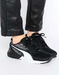 Кроссовки для бега Puma Ignite Dual - Черный