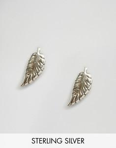 Серебряные серьги-гвоздики в виде перьев Reclaimed Vintage - Серебряный
