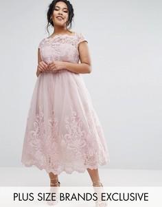 Кружевное платье с юбкой из тюля Chi Chi London Plus Premium - Серый