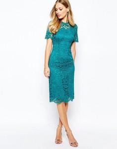 Кружевное цельнокройное платье Coast Cassia - Зеленый