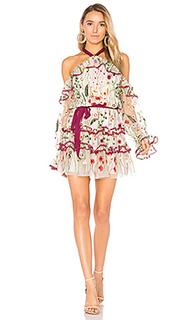 Платье adeline - Alexis