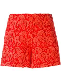 lace over-lay shorts  Giamba