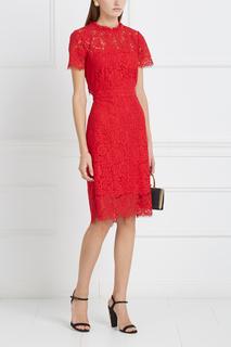 Кружевное платье Alma Diane von Furstenberg