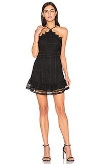Кружевное мини-платье benjamin - Karina Grimaldi
