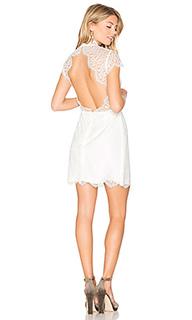 Кружевное мини-платье day dream - keepsake