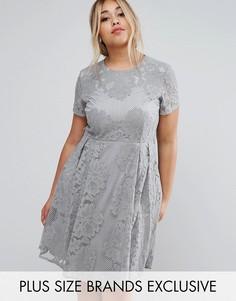Кружевное короткое приталенное платье с короткими рукавами Little Mistress Plus - Серый