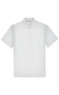 хлопковая рубашка Zanetti
