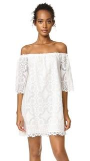 Кружевное платье с открытыми плечами Halden BB Dakota