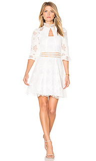 Pollen lace panel dress - NICHOLAS
