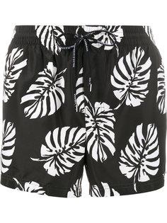 шорты для плавания с принтом пальмовых веток Dolce & Gabbana