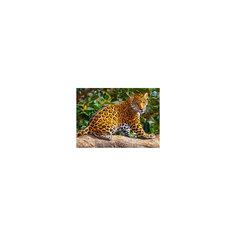 "Пазл ""Маленький ягуар"", 260 деталей, Castorland"