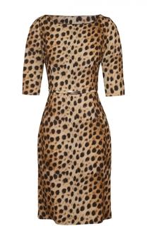 Приталенное платье с леопардовым принтом и поясом Blumarine