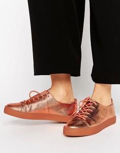 Кроссовки цвета металлик со шнуровкой ASOS DARLEY - Бежевый