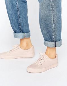 Кроссовки на шнуровке ASOS DARBY - Бежевый