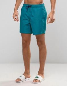 Зеленые шорты для плавания с небольшим логотипом Original Penguin - Зеленый