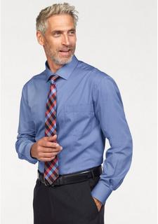 Комплект: рубашка + галстук + платок STUDIO COLETTI