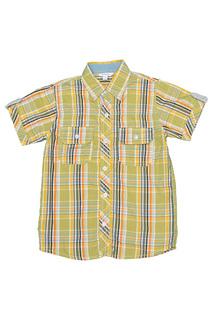 Рубашка Dodipetto