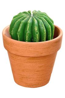 Свеча Cactus 13 см Boltze