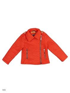 Куртки ARCOBALENO