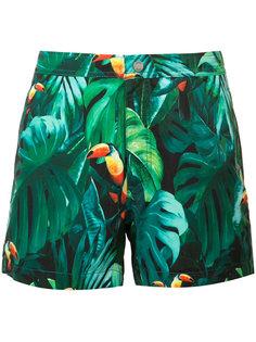 Calder tropical trunks Onia