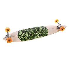 Скейт мини круизер Globe Monstera Pintail Natural/Monst 44 x 9.75 (24.8 см)