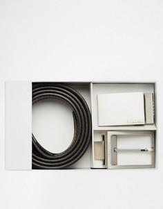 Ремень в подарочной упаковке Calvin Klein - Черный