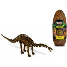Яйцо динозавра - сборная модель Апатозавра, Geoworld