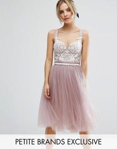 Платье для выпускного с корсетным топом и тюлевой юбкой Chi Chi Petite - Розовый
