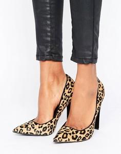 Туфли-лодочки с леопардовым принтом Paper Dolls - Черный