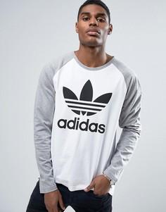 Серый лонгслив с логотипом-трилистником adidas Originals BK7628 - Серый
