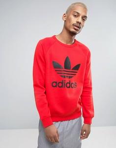 Красный свитшот с круглым вырезом и логотипом-трилистником adidas Originals BK5868 - Красный