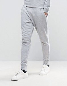 Джоггеры с логотипом AllSaints - Серый