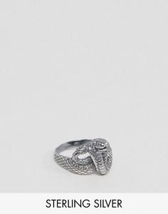 Серебряное кольцо в виде змеи ASOS - Серебряный